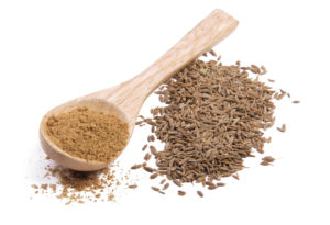 coriander seeds and coriander powder