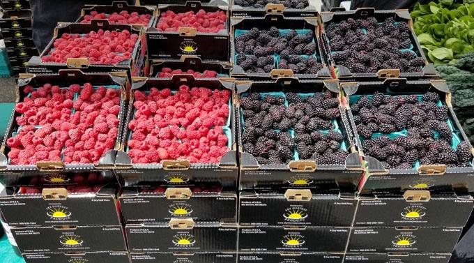 foodie experiences farmer's market berries
