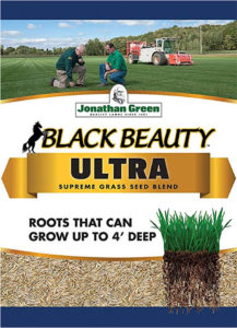 jonathan greens black beauty ultra grass seed