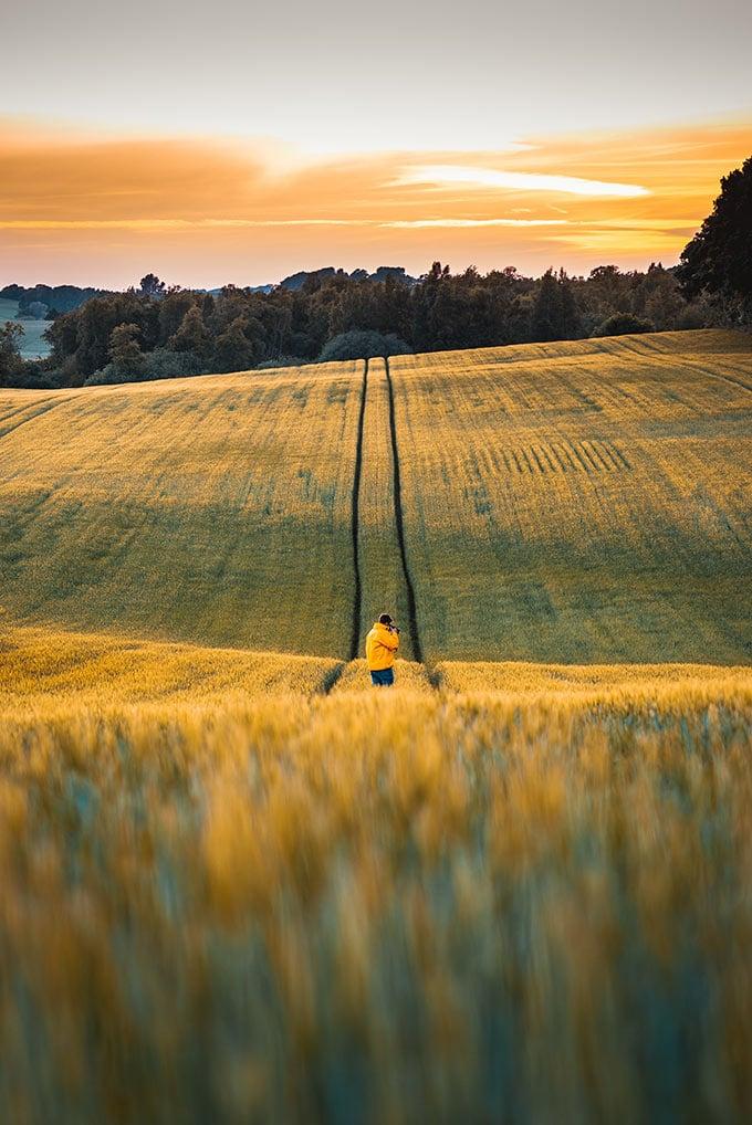 an American farmer in his field