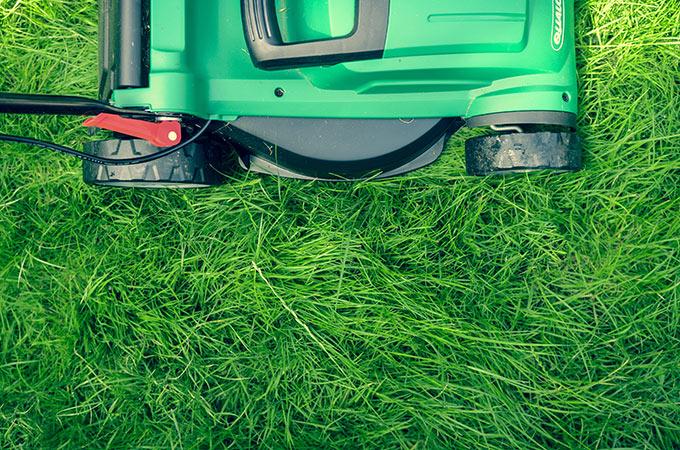 a beautiful organic green lawn and lawnmower